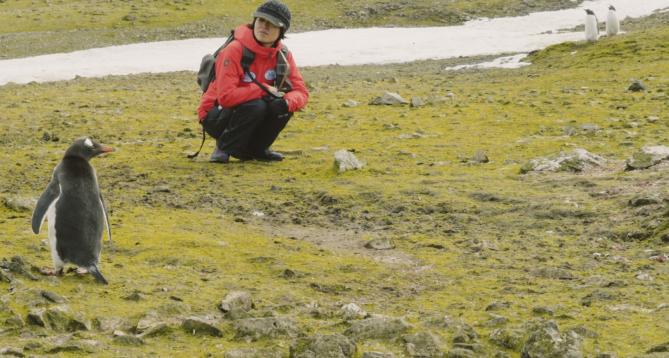 남극 펭귄과 마주보고 있는 필자 - 공승규 제공
